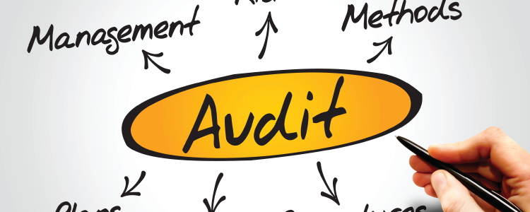 ERP for Auditors